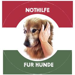 Nothilfe f�r Hunde