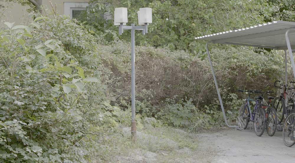 Regenstreif Illich (rf_garten_jetzt.jpg)